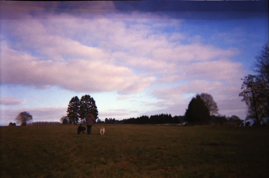 Shoot It With Film Sven Brauer Disposable Cameras