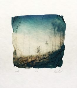 How To Make Polaroid Transfers and Emulsion Lifts by Aleksandra Wolter on Shoot It With Film