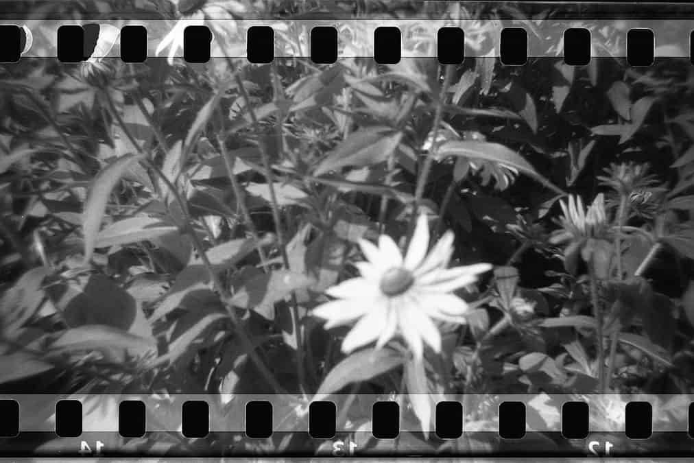 DIY Holga 35mm Sprocket Hack by Jennifer Stamps on Shoot It With Film