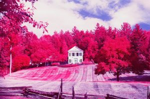 How To Shoot Color Infrared Film by Jessica Bellinger on Shoot It With Film