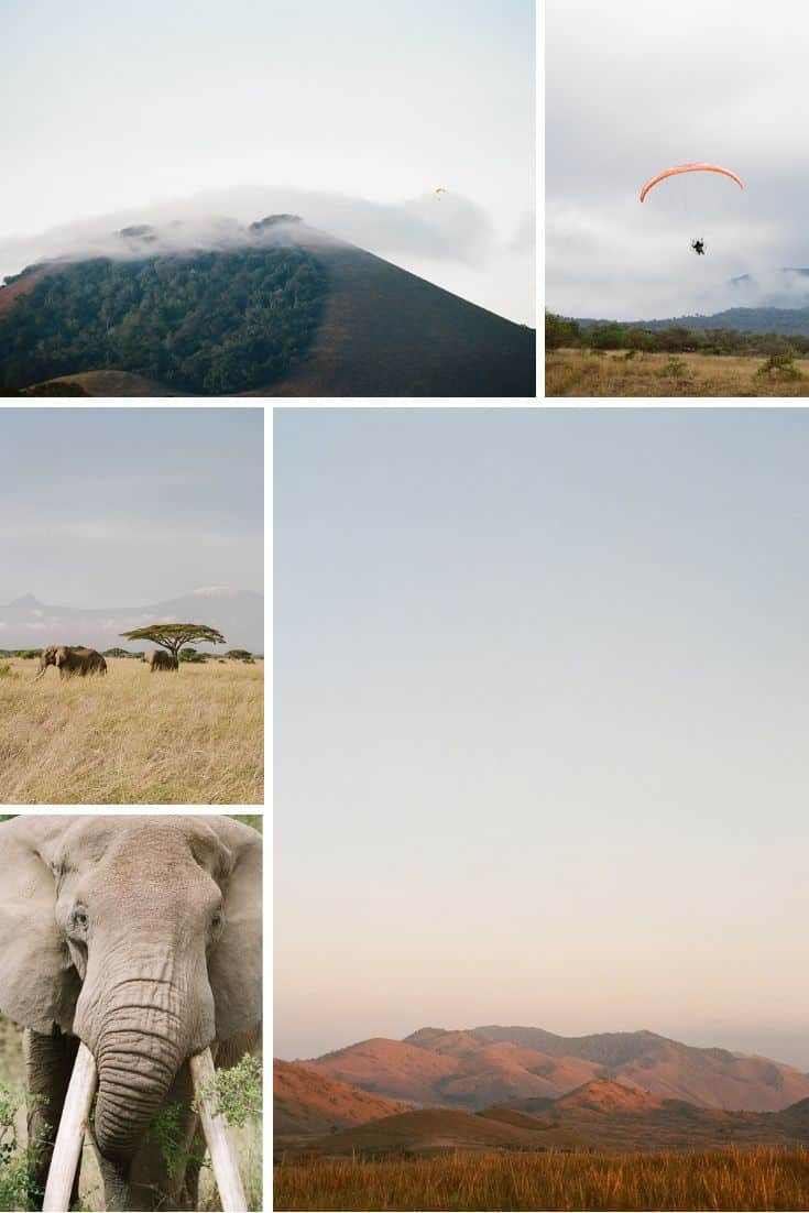 Medium Format and 35mm Film Photography Feature Documenting the Kenya Wildlands Project on Shoot It With Film