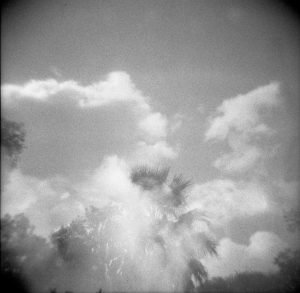Scanning Your Own Film Negatives by Jennifer Stamps on Shoot It With Film