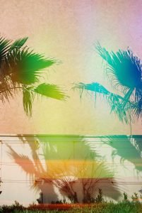 Tips for Creating Colorful Film Images by Elizabeth Glenn on Shoot It With Film