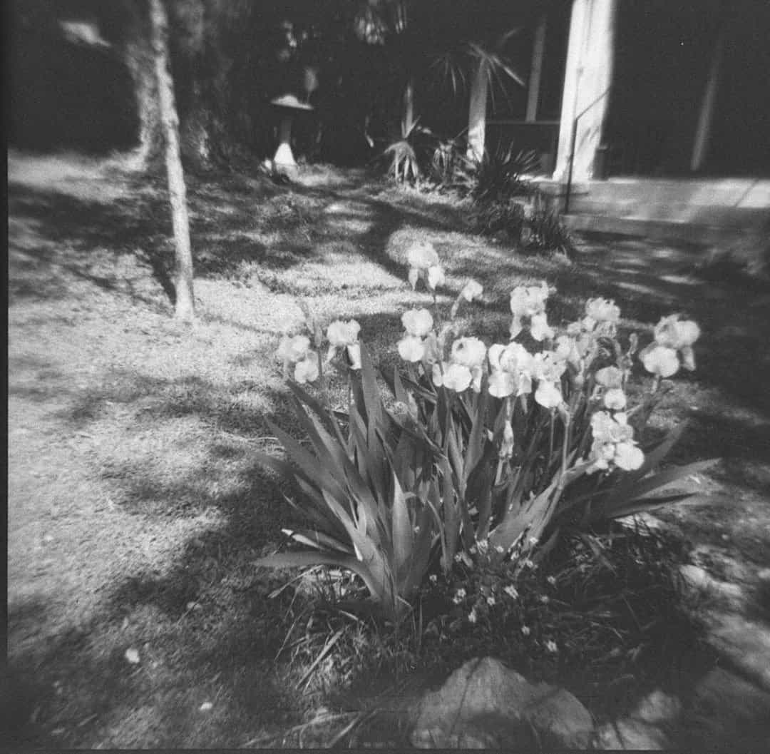 Develop Color Film in Black and White Chemicals by Jennifer Stamps on Shoot It With Film