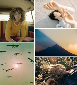35mm Film Photography and Medium Format Film Photography Inspiration on Shoot It With Film Instagram Roundup