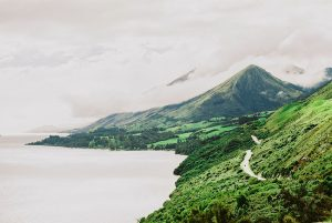 Coastline - Canon A1 35mm New Zealand Travel Story on Shoot It With Film