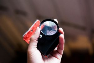 Creative Filters for Film Photography by Spektrem Effects on Shoot It With Film