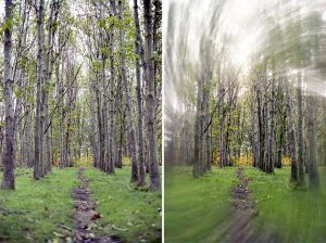 Creative Filters for Film Photography by Spektrem Effects on Shoot It With Film - Woods radial blur