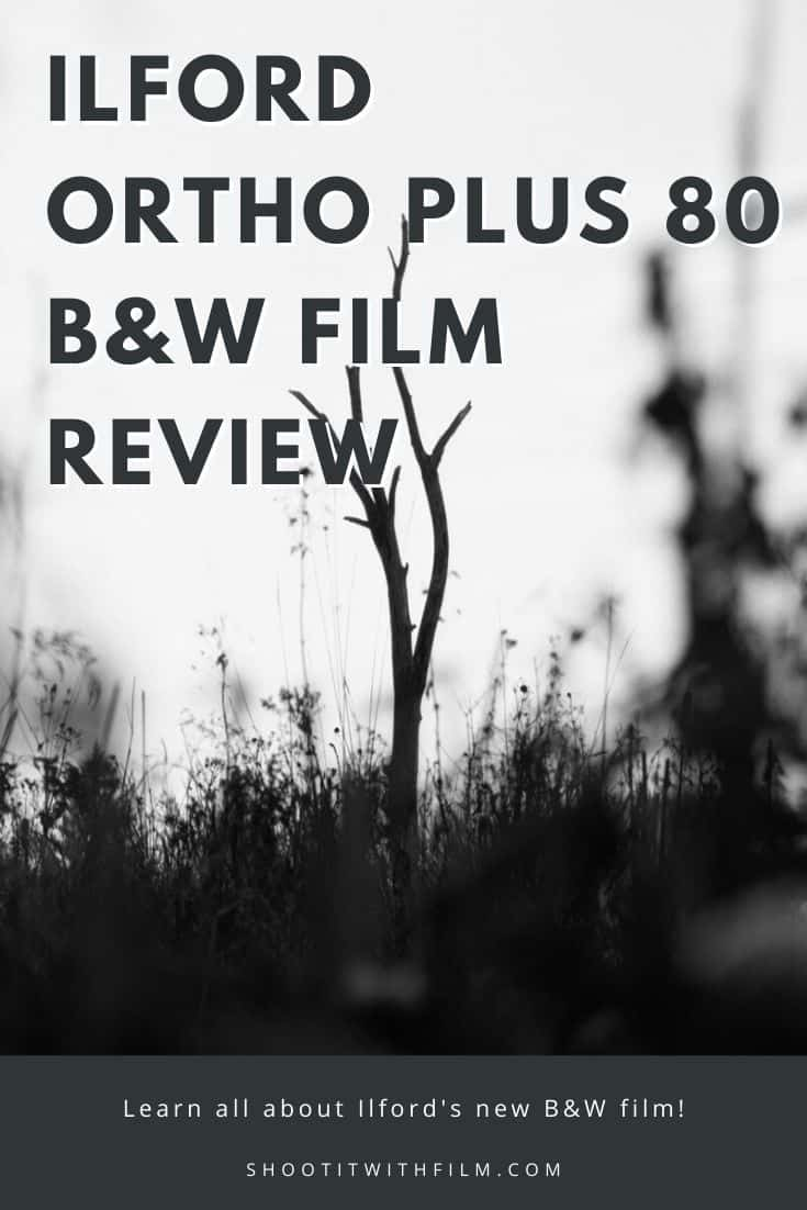 Ilford Ortho Plus 80 Black and White Film Review