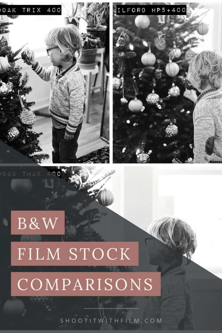 Black and White Film Stock Comparisons - Kodak Tri-X Ilford HP5 Kodak TMax