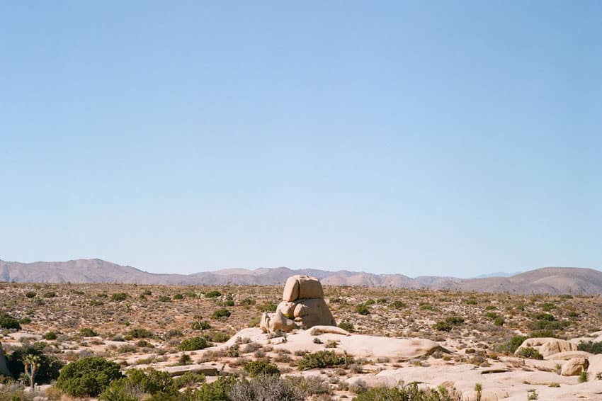 Medium Format Film Photography Joshua Tree Travel Story by Sebastian Kalkoff on Shoot It With Film