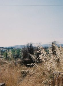 Sicilian Landscape - Sicily Travel Story on 35mm Film by Lisa Carbone on Shoot It With Film