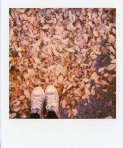 Polaroid picture of a person walking through leaves - 5 Film Cameras Under 50 Dollars by Jennifer Stamps on Shoot It With Film