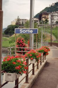 35mm film image of flowers along the road - Switzerland Travel Story by Marley Bosshardt on Shoot It With Film