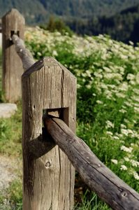 35mm film image of fence - Switzerland Travel Story by Marley Bosshardt on Shoot It With Film
