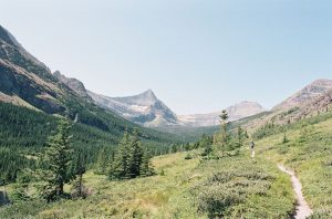 Mountains and a walking trail photographed on 35mm film - Glacier National Park Travel Story by Jill Bridgeman on Shoot It With Film