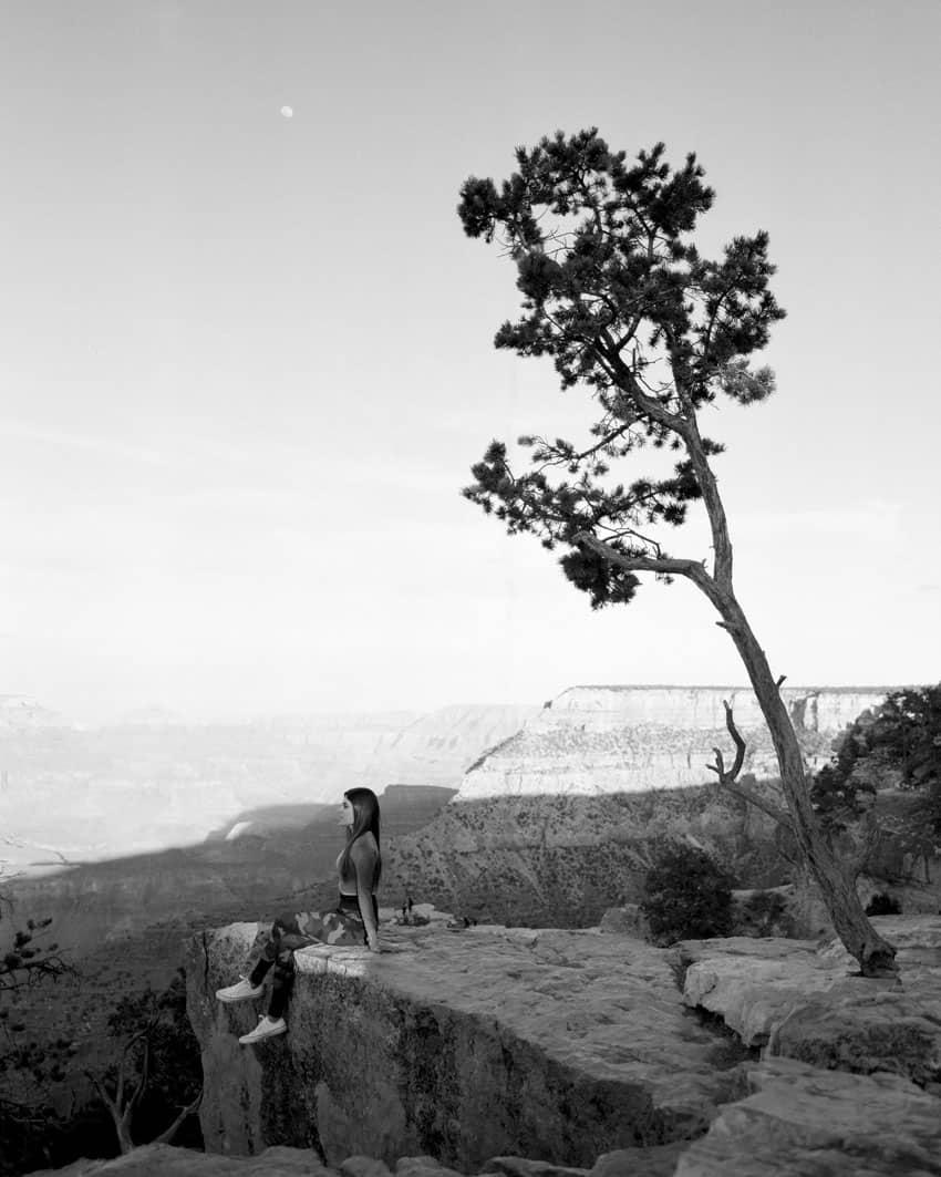 Черно-белое изображение дерева на склоне горы на фильме «Илфорд Дельта 400» - Путеводитель по фильму «Илфорд BW» Дэвида Роуза о фильме «Снимай с пленки»