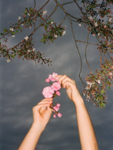 Hands holding flowers - The Seed I Nurtured Fine Art Series by Chloe Xiang on Shoot It With Film