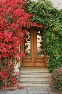 Doorway with flowers on 35mm color film - San Francisco Photo Essay by Nick Hogan on Shoot It With Film
