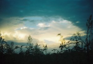 35mm film photography of the evening sky - Impressions of Mother Nature by Ida Meadow on Shoot It With Film