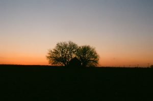 35mm film photography of the sun setting - Impressions of Mother Nature by Ida Meadow on Shoot It With Film