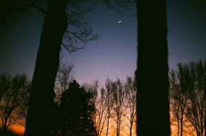 35mm film photography of the night sky - Impressions of Mother Nature by Ida Meadow on Shoot It With Film