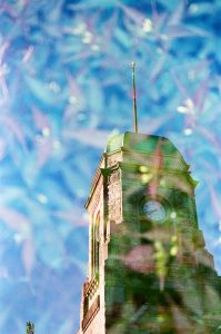 35mm film photography double exposure of leaves and a building - 5 Creative Film Photography Projects to Try When You're Uninspired by Amy Berge on Shoot It With Film
