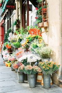 Flowers on the sidewalk - Paris in Summer 35mm Film Travel Story by Marissa Wu on Shoot It With Film