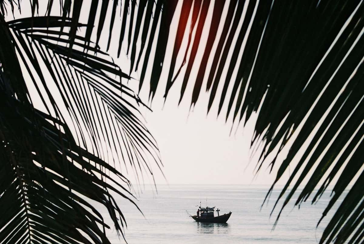35mm film image of a boat framed by leaves - Vietnam Travel Story by Kamal Tung on Shoot It With Film