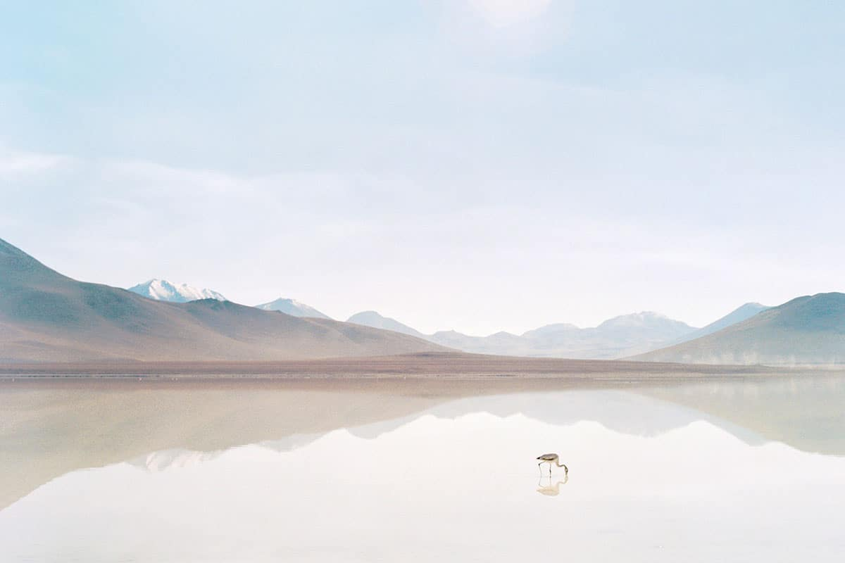 Medium format film image of a lake in the Atacama Desert - Atacama Desert Chile Travel Story by Anna Doshina on Shoot It With Film