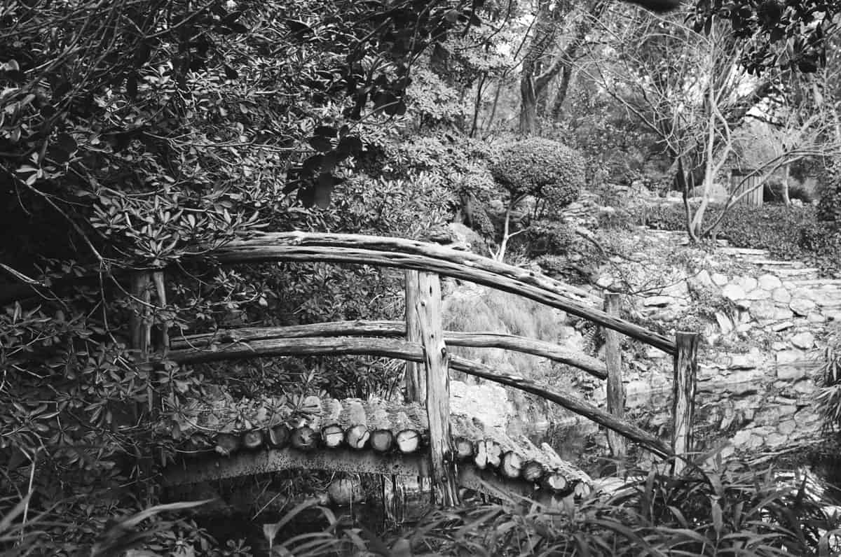 B&W film image of a bridge - Ilford HP5 Film Review on Shoot It With Film