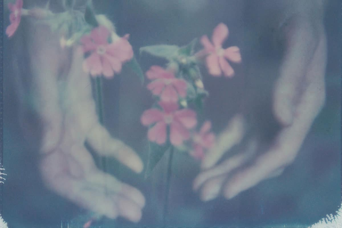 Double exposure of a hand and flowers on Polaroid film - In Between Polaroid Fine Art Series by Mila Maes on Shoot It With Film