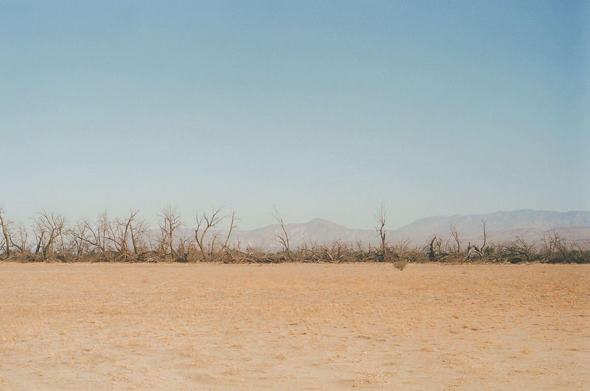 35mm film image of the California desert - California Desert on Film by Kendall Wheeler on Shoot It With Film